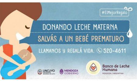 El Banco de Leche Humana de Mendoza fomentó la donación de leche materna y se quedó con dos Eikon Cuyo